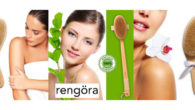 rengöra: to brush, clean, or cleanse (swedish origin). the gift […]