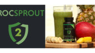 St. Pat's smoothie recipe New green smoothie – with a […]