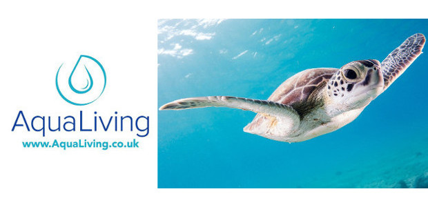 A Brand-New Water Lifestyle Store Sets Sail Online – AquaLiving.co.uk […]