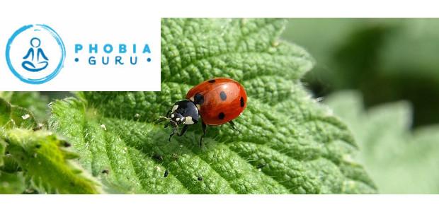 Introducing Phobia Guru Adam Michael Cox (www.phobiaguru.com) Phobias are so […]