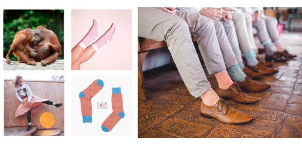 Stocking-filler socks that save endangered species www.criticallyendangeredsocks.com INSTAGRAM | FACEBOOK […]