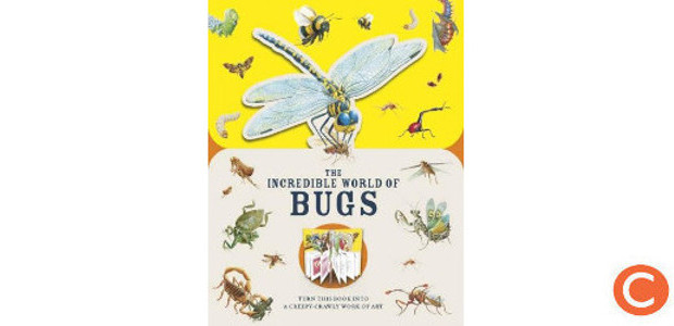 PAPERSCAPES: THE INCREDIBLE WORLD OF BUGS Author Melanie Hibbert (www.carltonbooks.co.uk) […]