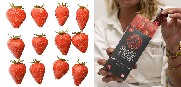 Gregory's Tree, the fruit-based snack bar brand is excited to […]