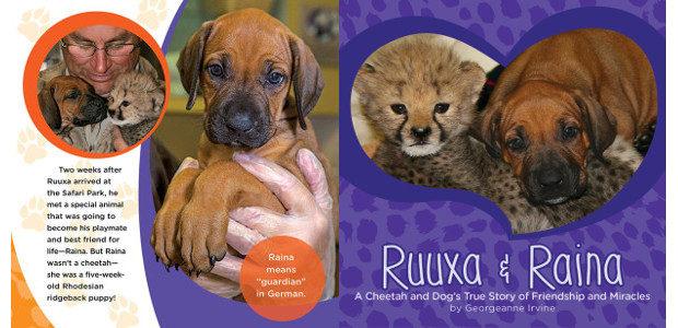 BOOK! From San Diego Zoo >> RUUXA & RAINA: a […]