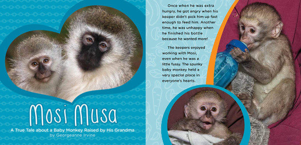 BOOK > From San Diego Zoo >> Mosi Musa, a […]