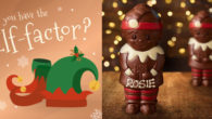 DO YOU HAVE THE ELF-FACTOR? Are you counting down the […]