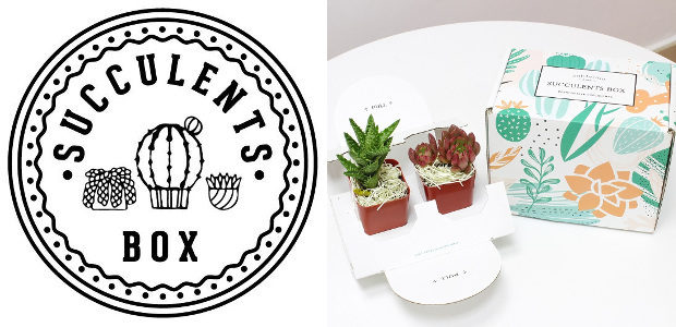 Succulentsbox.com… are a small succulent business based in California that […]