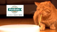 Great gift Ideas from PetSafe for both dogs and cats! […]