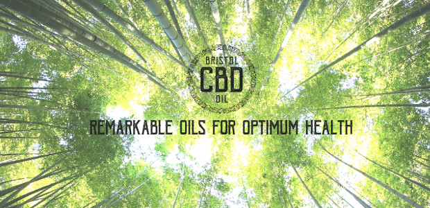 With CBD Oil used by many athletes and used by […]
