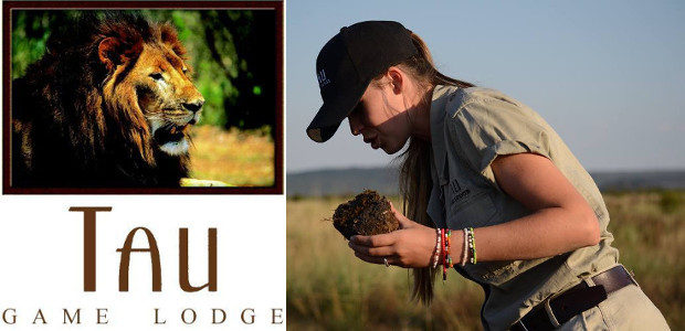 Paying it forward with travel… at Tau Game Lodge in […]