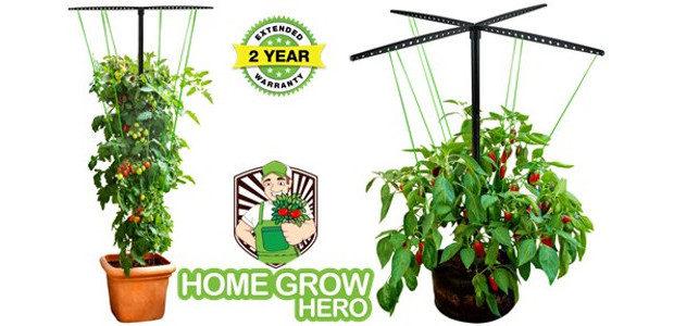 FAT TOMATO –just launched on US amazon via homegrowhero.com www.amazon.com/TOMATO-Trellis-Vertical-Garden […]