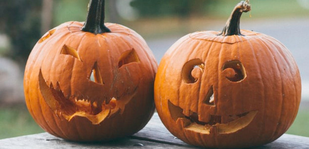 Hydro Halloween Spook-tacular Ghosts, goblins and ghouls are set to […]