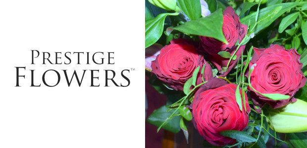 WOW!!! Look At These Roses…. My Flowers Arrived From Prestige […]