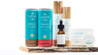 Cativa CBD, and their products. A brand with many options, […]