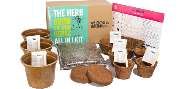 Grow Your Own Herb Plants Kit | Box & Sprout […]