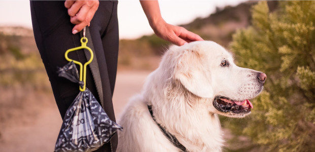 The dooloop® leash accessory allows you to hold multiple bags […]
