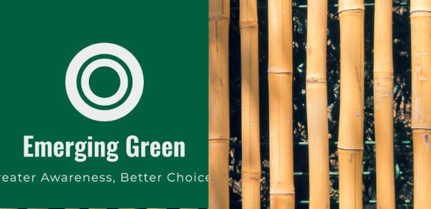 Emerging Green… Eco-Friendly Products www.emerging-green.biz Emerging Green is a small […]
